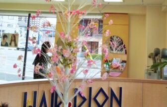 千葉県千葉市 美容室Dion【ディオン】